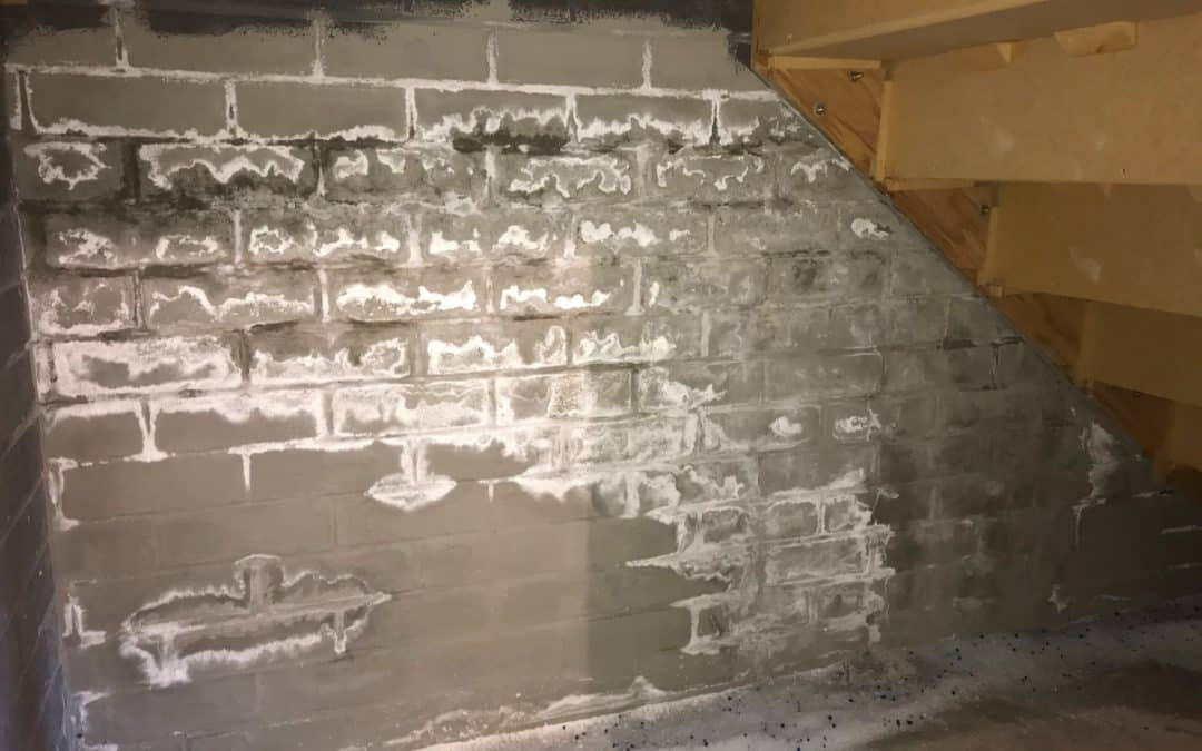 Salt Deposits on the Walls – and other signs of Rising Damp and Lateral                           Damp / Penetrating Damp